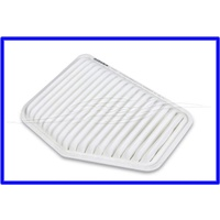 Air filter - ACDelco - VE WM ALL 2007 ONWARDS
