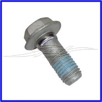 BOLT M6 -1.0 x 30 Grade 8.8 Steel Dacro ALLOYTEC & LS SERIES