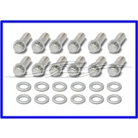 INTAKE MANIFOLD BOLTS CHROME 12 POINT FITS SMALL BLOCK CHEVROLET 265-400 and CHRYSLER / HEMI 273-440